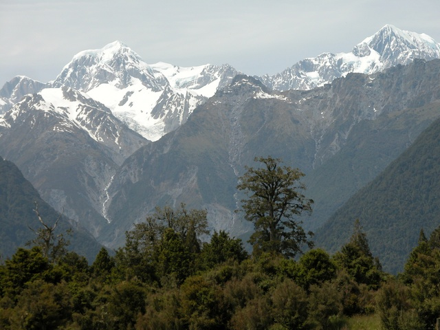 Southern Alps photo