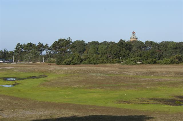 Falsterbo photo